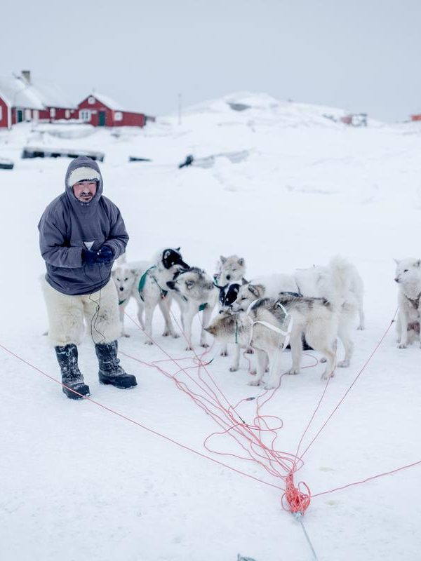 GREENLAND – DOG SLEDDING DAY