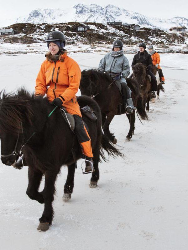 LOFOTEN – HORSEBACK RIDING