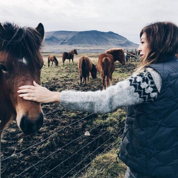 Petting Icelandic Horses